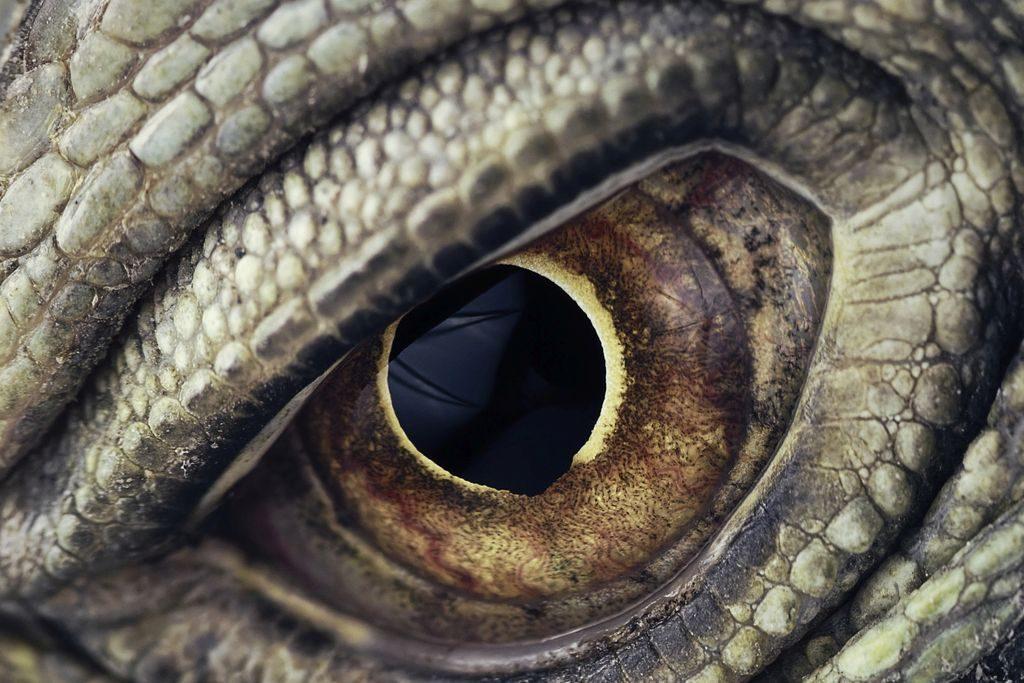Hinter der Maske: So entstehen Movie-Monster